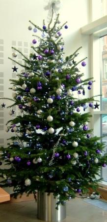 ChristmasTrees20060001