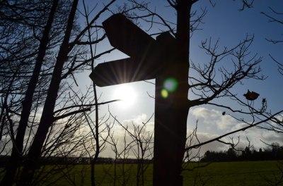 direction-indicators-and-sun