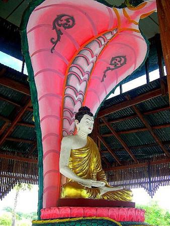BuddhaAndNaga