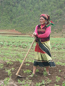 Mosuo woman farmer