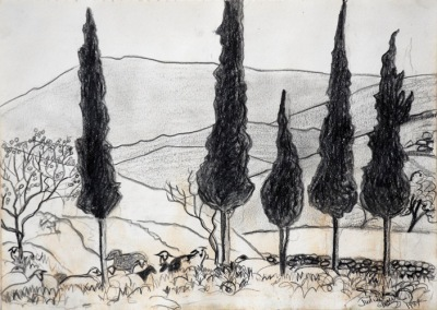 Sheep and Cyprus Trees, drawing by Judith Shaw