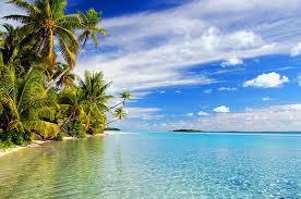 Ocean&Trees