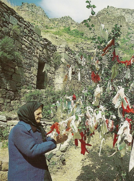 Armenian wishing tree crop