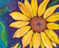 sunflower spiral featured image