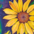 sunflower spiral featured image