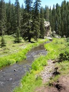 new mexico mountain stream