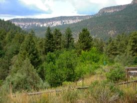 jemez mountain view