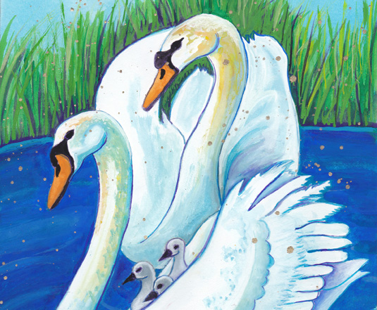 Swan Guide To Love And Spiritual Evolution By Judith Shaw