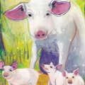 Pig/Sow Spirit Animal Guide