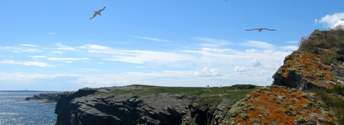 Orkney-island-eagle-tomb
