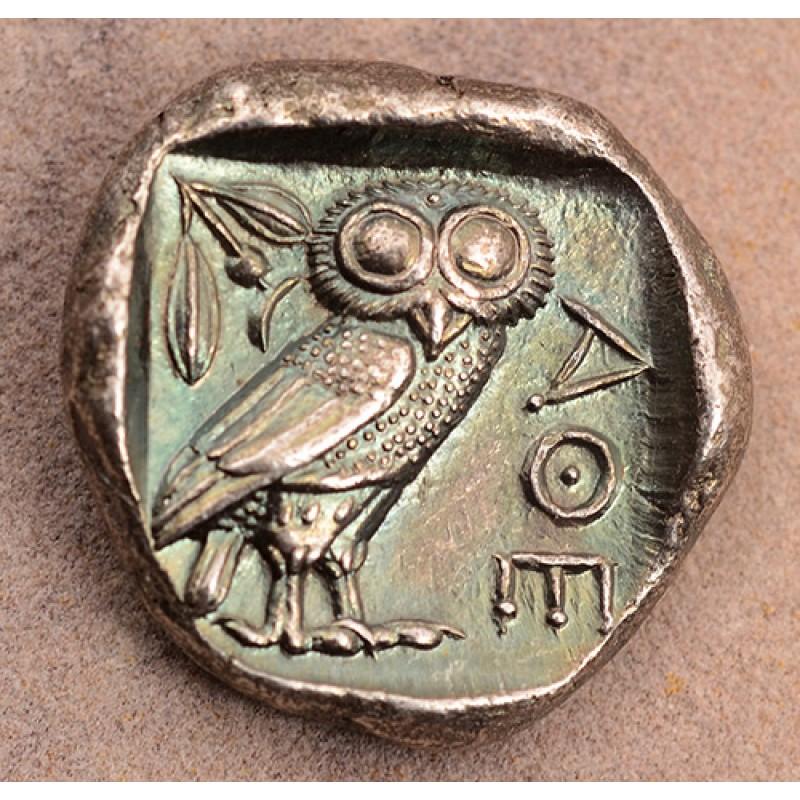 owl-1b-800x800-1-4